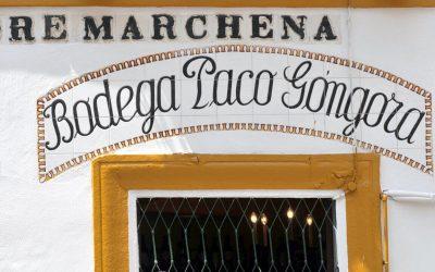 Dove mangiare al Arenal